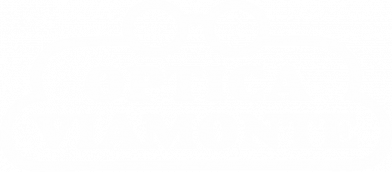 gallery/logo-optica-viamonte